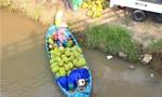 """Kỳ 4: Khi thủy sản, trái cây bị """"phù phép"""""""