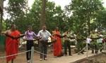 Thả 42 con dơi quý hiếm về thiên nhiên tại chùa Dơi