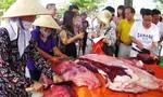 Hơn 40 người nhập viện do ăn thịt trâu mua ngoài chợ