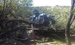 Nữ tài xế vẫn sống sau 6 ngày nằm trong ô tô lơ lửng trên cây