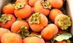 Bác sĩ khuyến cáo một số người có thể bị tắc ruột khi ăn quả hồng giòn