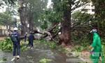 Bão số 9 suy yếu thành áp thấp nhiệt đới, mưa rất to trên diện rộng (cập nhật)