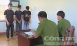Nhóm thanh niên gây ra hàng chục vụ trộm nông sản
