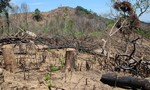 Ban cán sự đảng UBND tỉnh Đắk Nông vi phạm đến mức phải kỷ luật