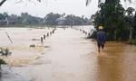 Nước lũ lên nhanh gây ngập nhiều vùng ở Quảng Ngãi