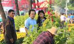 Mãn nhãn với chợ hoa Tết lớn nhất Sài Gòn