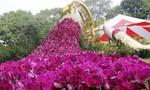 Hội hoa xuân Tao Đàn quy tụ 4.000 tác phẩm độc đáo mở cửa đón khách
