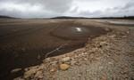 Hạn hán nghiêm trọng, Nam Phi tuyên bố 'thảm họa quốc gia'