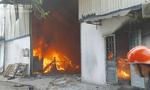 Cháy lớn công ty gỗ, công nhân nguy cơ mất việc đầu năm