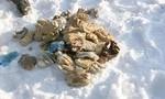 Nga công bố kết luận về 27 đôi bàn tay người trong túi ni lông