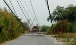Xe ben kéo ngã hàng loạt trụ điện ở Sài Gòn