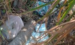 Phát hiện vụ xả chất thải gây ô nhiễm ở Sài Gòn