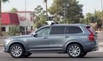 Uber ngừng thử nghiệm xe tự lái do tai nạn