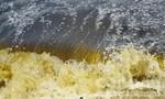 Biển Đà Nẵng xuất hiện vệt nước lạ bất thường