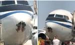 Máy bay chở khách thủng một lỗ lớn vì va phải chim