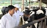 Liên kết - Sự sống còn của chăn nuôi nông hộ