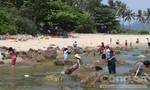 Đà Nẵng: Nỗ lực triển khai dự án Nam Ô