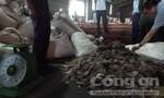 """Hơn 7 tấn vảy tê tê """"núp""""  trong container chở gỗ cập cảng ở Sài Gòn"""