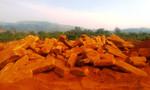 Vụ cà phê chết bất thường: Phát hiện thêm 2 mỏ khai thác đá 'chui'