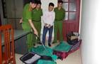 Ba vali kéo đầy rắn hổ mang vận chuyển từ Sài Gòn ra Hà Nội