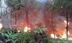 Cháy rừng diện rộng trong khu bảo tồn núi Tà Cú