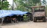 """Vụ gỗ lậu """"khủng"""" ở Đắk Nông: Đình chỉ 4 sĩ quan biên phòng"""