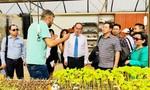 TP.HCM tìm hiểu về đô thị thông minh tại Israel