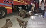 Phát hiện xe khách vận chuyển gần 1 tấn nghi gỗ trắc