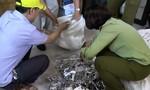 Sản xuất mỹ phẩm, thực phẩm chức năng trong nhà vệ sinh