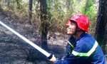 Rừng thông cháy lớn giữa nắng nóng