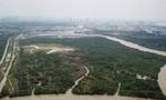 Vụ Công ty Tân Thuận bán đất: Kỷ luật và đề nghị xử lý những người liên quan