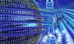 Luật An ninh mạng không kiểm soát thông tin cá nhân