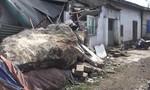 Tảng đá 10 tấn lăn xuống nhà dân, một người tử vong