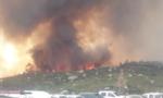 Hàng ngàn người sơ tán do cháy rừng trên diện rộng ở California