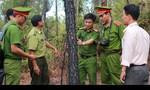 Vụ rừng phòng hộ cháy nghiêm trọng: Nghi có kẻ phá hoại