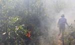 Rừng cháy dữ dội, hàng trăm người tham gia dập lửa