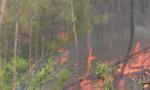 Người đàn ông chữa cháy rừng bị lửa thiêu tử vong