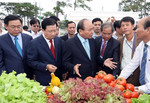 Thủ tướng: Phải đột phá mạnh trong phát triển nông nghiệp công nghệ cao