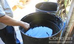 Hàng trăm hộ dân ở vùng nước nhiễm dầu khát nước sạch