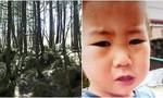 Bé trai 2 tuổi sống sót sau ba ngày lạc trong rừng