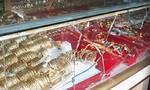 Bắt nóng hai tên chuyên cướp giật tại các tiệm vàng