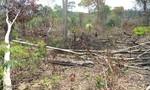 Giải tỏa lấn chiếm đất rừng, 2 nhân viên bị chém trọng thương