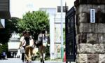 Đại học ở Nhật bị tố sửa điểm thi để hạn chế học viên là nữ