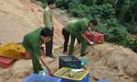 Thả 8 con rắn quý hiếm về môi trường tự nhiên