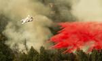 Thảm họa cháy rừng tồi tệ nhất lịch sử ở California