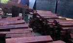 Phát hiện đoàn xe tải chở gỗ cẩm và hương lậu từ Lào vào Việt Nam