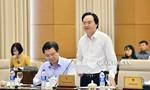 Chính phủ chưa có chủ trương cải cách tiếng Việt