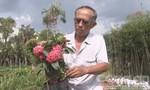 Làng hoa Sa Đéc: Khi nông dân tự đi tìm khách hàng
