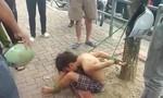 Vụ thiếu niên bị trói vào gốc cây: Tạm giữ 3 kẻ cướp tài sản
