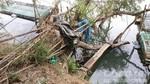 Đầu tư 13 tỷ đồng xây kè chống sạt lở bờ sông Bồ